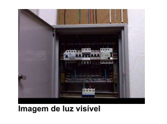 termografia_imagem2